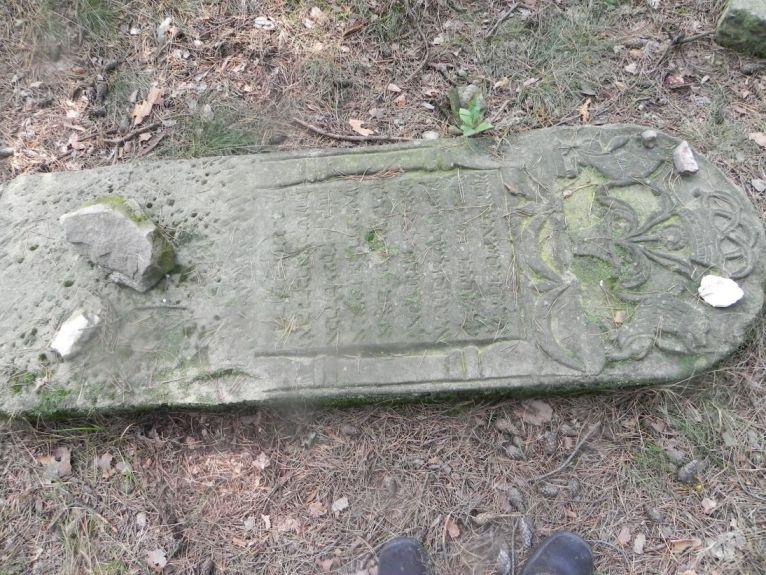2011-08-07 Inowłódz - cmentarz żydowski (50)
