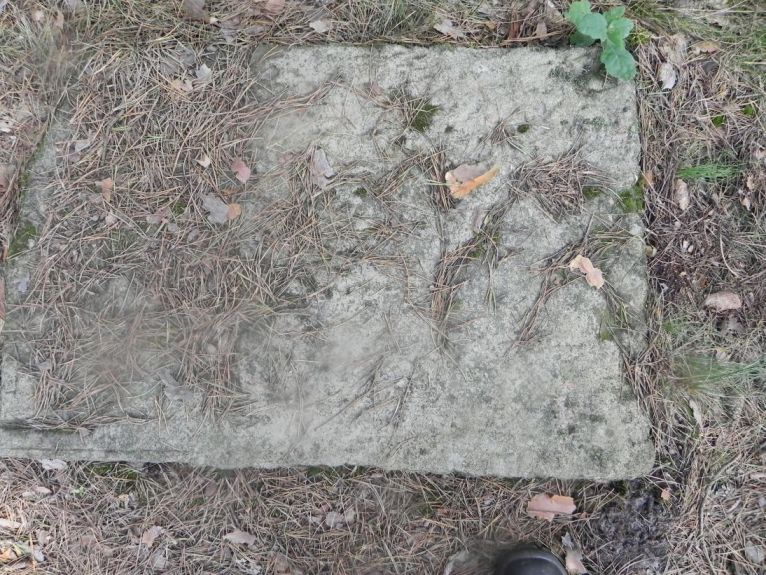2011-08-07 Inowłódz - cmentarz żydowski (51)