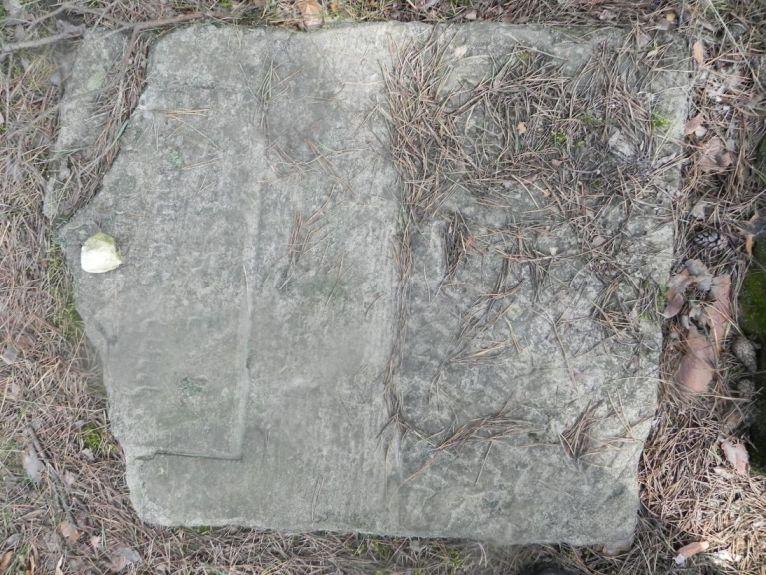 2011-08-07 Inowłódz - cmentarz żydowski (52)