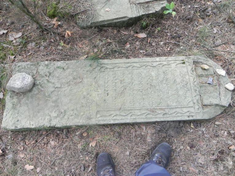 2011-08-07 Inowłódz - cmentarz żydowski (53)