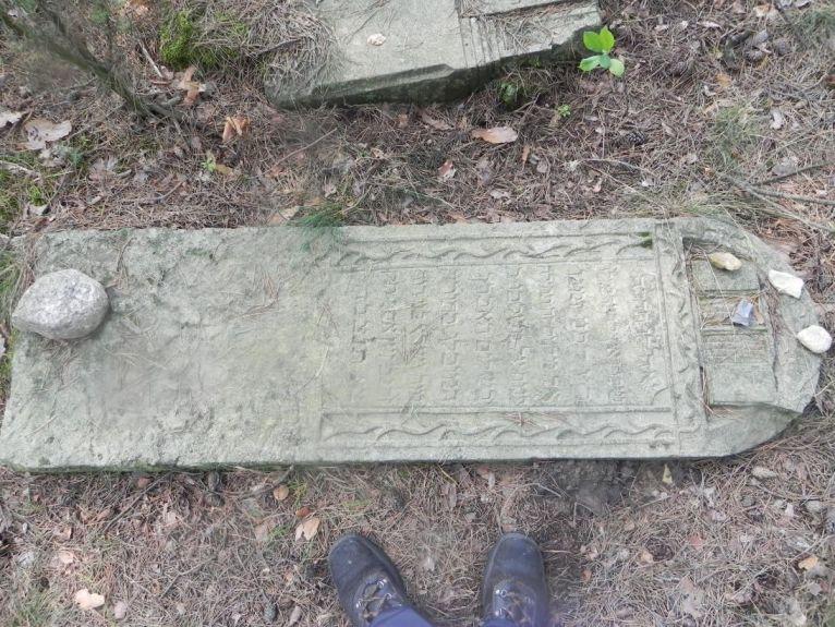 2011-08-07 Inowłódz - cmentarz żydowski (56)