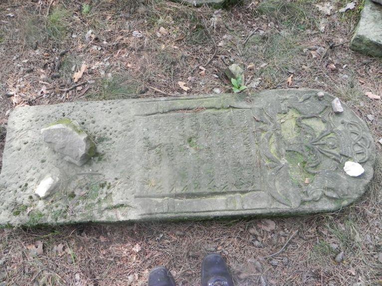 2011-08-07 Inowłódz - cmentarz żydowski (57)