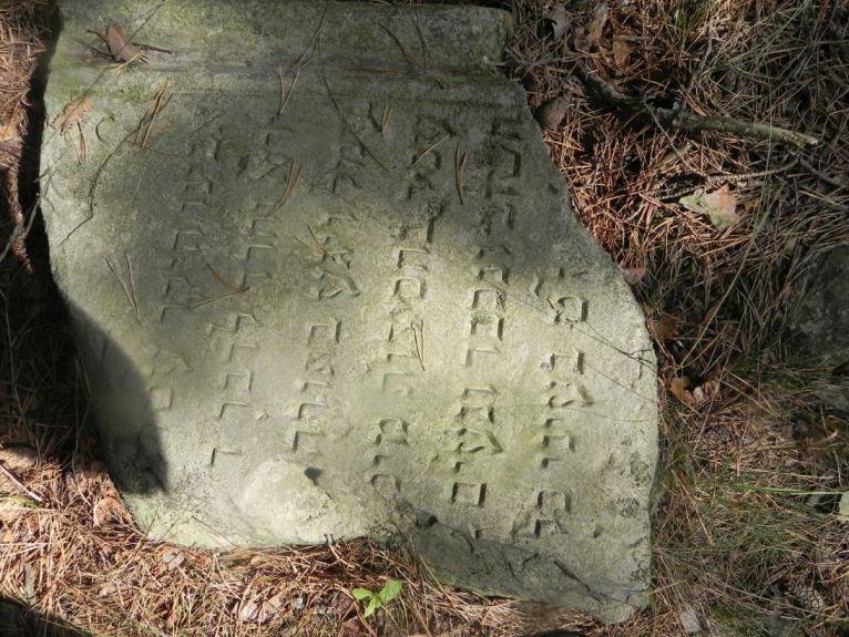 2011-08-07 Inowłódz - cmentarz żydowski (59)