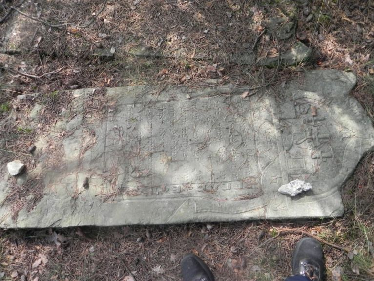 2011-08-07 Inowłódz - cmentarz żydowski (64)