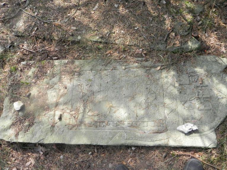 2011-08-07 Inowłódz - cmentarz żydowski (65)