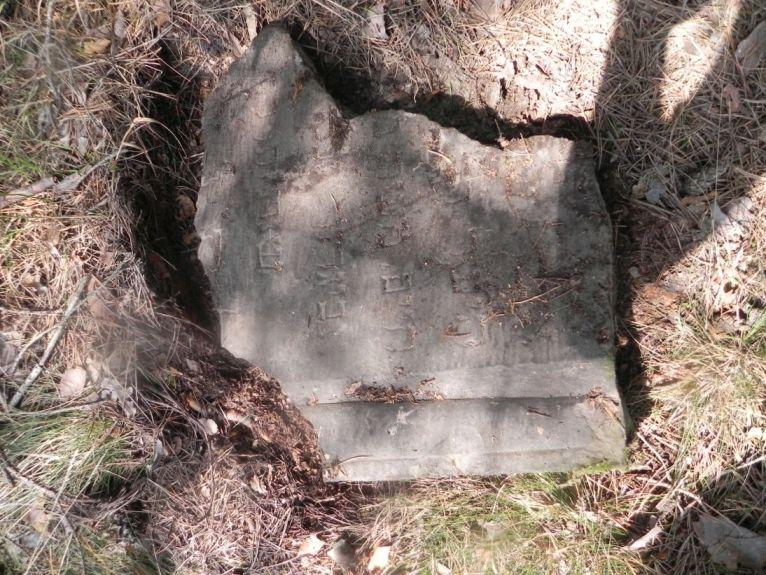 2011-08-07 Inowłódz - cmentarz żydowski (68)