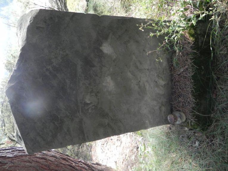 2011-08-07 Inowłódz - cmentarz żydowski (9)