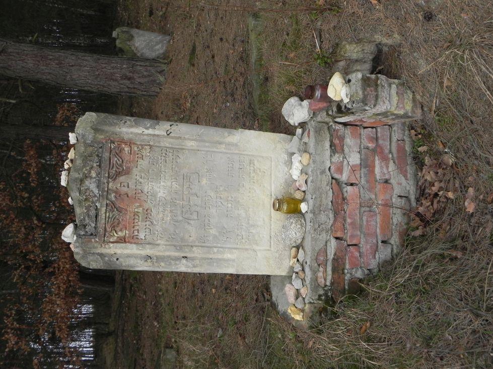 2014-04-06 Inowłódz - cmentarz żydowski (3)