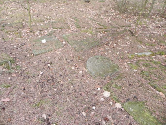 2014-04-06 Inowłódz - cmentarz żydowski (5)