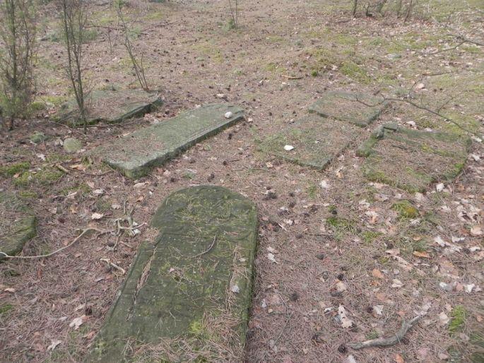 2014-04-06 Inowłódz - cmentarz żydowski (6)