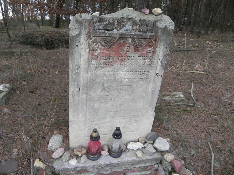2018-01-14 Inowłódz - cmentarz żydowski (4)