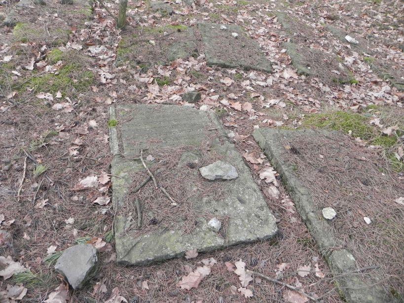 2018-01-14 Inowłódz - cmentarz żydowski (8)