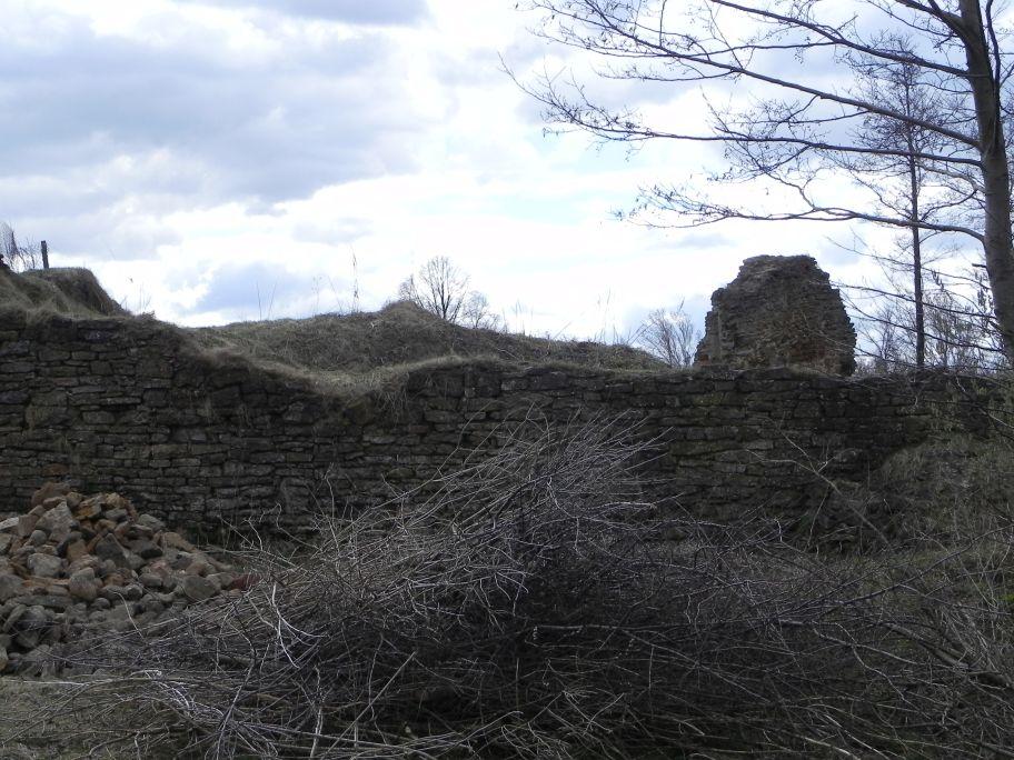 2011-04-10 Inowłódz - ruiny zamku (10)