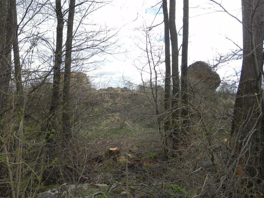 2011-04-10 Inowłódz - ruiny zamku (5)