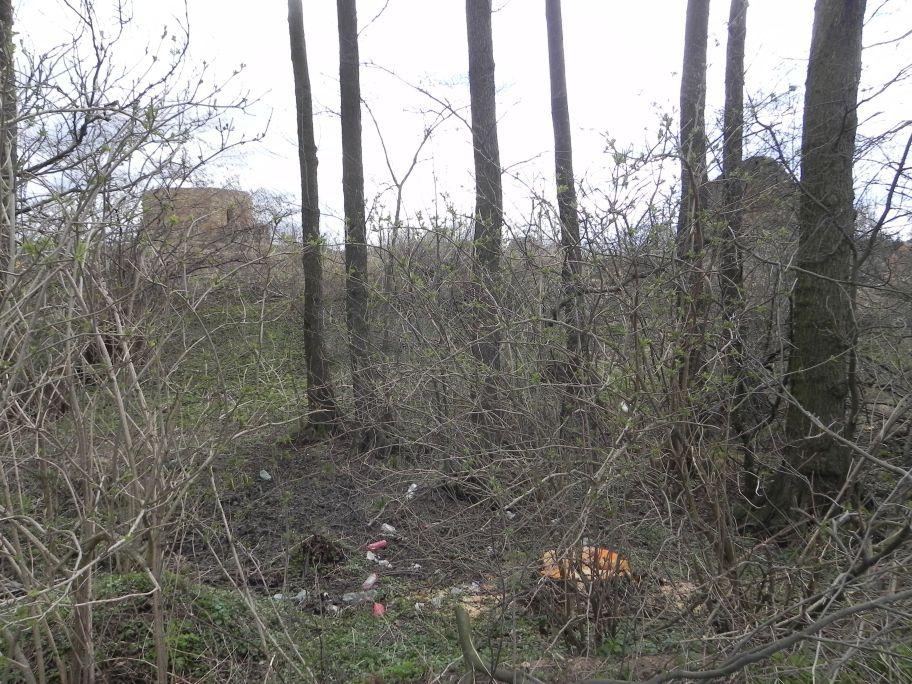 2011-04-10 Inowłódz - ruiny zamku (6)