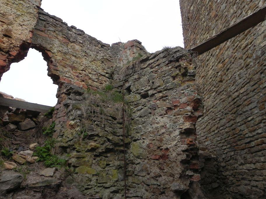 2011-04-17 Inowłódz - ruiny zamku (38)