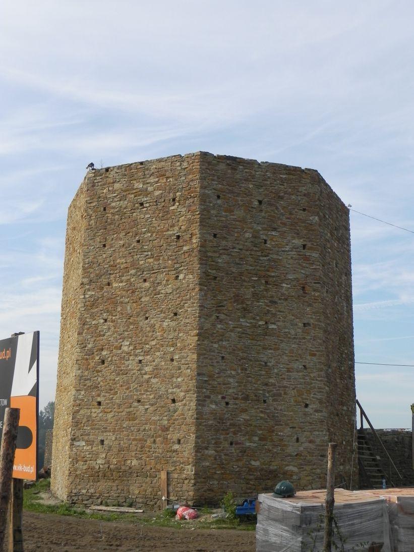 2011-09-11 Inowłódz - ruiny zamku (1)