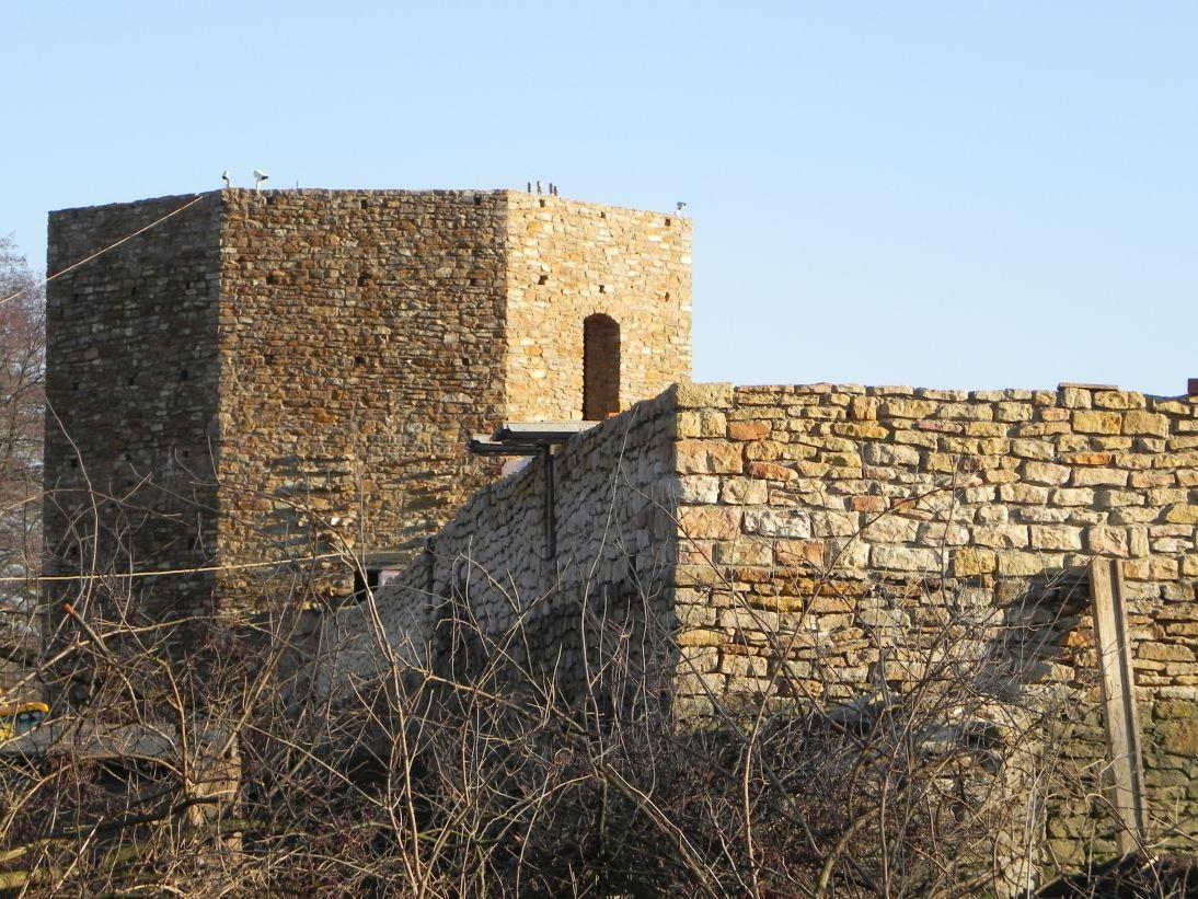 2011-12-11 Inowłódz - ruiny zamku (3)