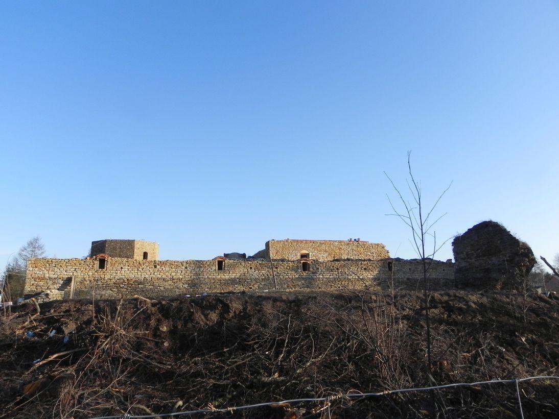 2011-12-11 Inowłódz - ruiny zamku (8)