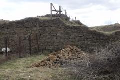 2011-04-10 Inowłódz - ruiny zamku (9)