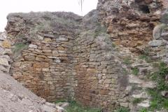 2011-04-17 Inowłódz - ruiny zamku (15)