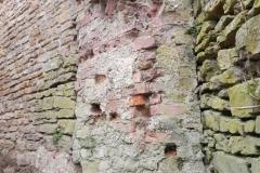 2011-04-17 Inowłódz - ruiny zamku (36)