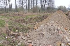 2011-04-17 Inowłódz - ruiny zamku (5)