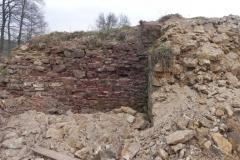 2011-04-17 Inowłódz - ruiny zamku (8)