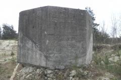 Inowłódz Kop - bunkier Tob-2 (101)