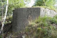 Inowłódz Kop - bunkier Tob-2 (23)