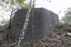 Inowłódz Kop - bunkier Tob-2 (70)
