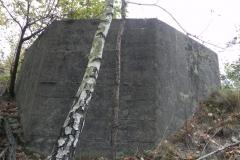 Inowłódz Kop - bunkier Tob-2 (71)
