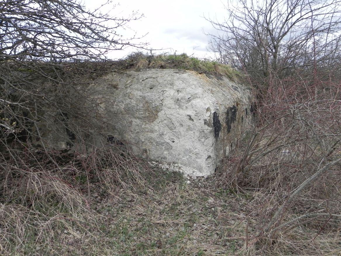 Inowłódz Koś - bunkier Piechoty-5 (1)