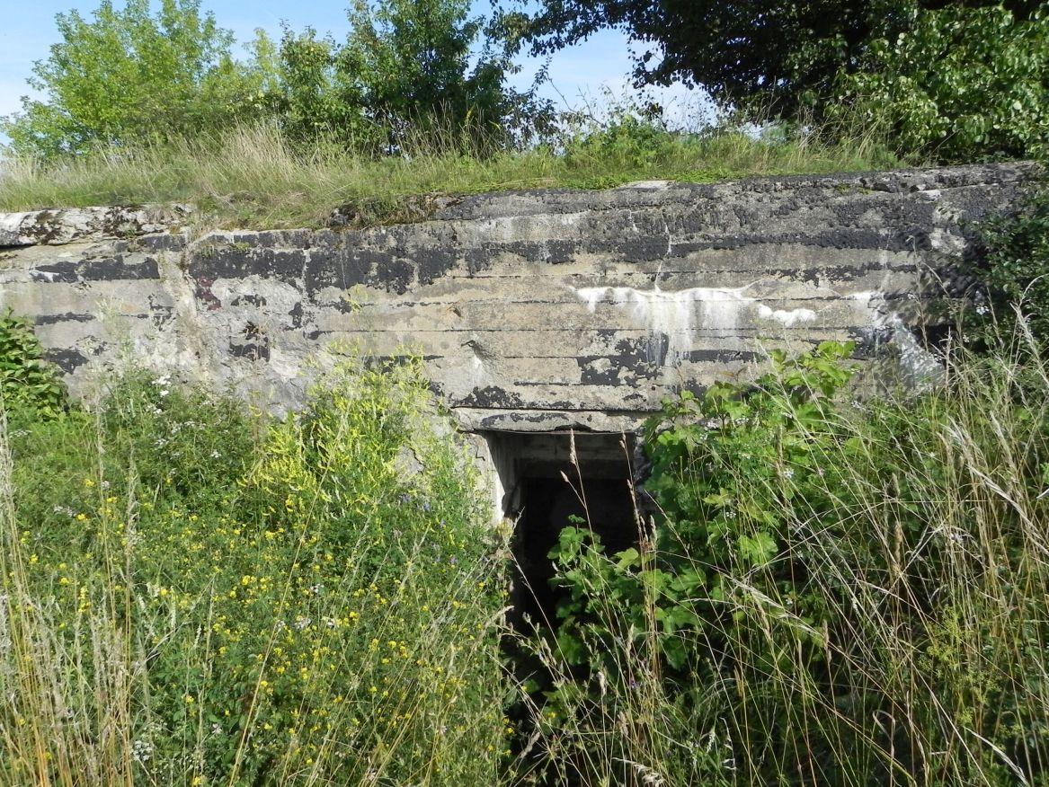 Inowłódz Koś - bunkier Piechoty-5 (21)