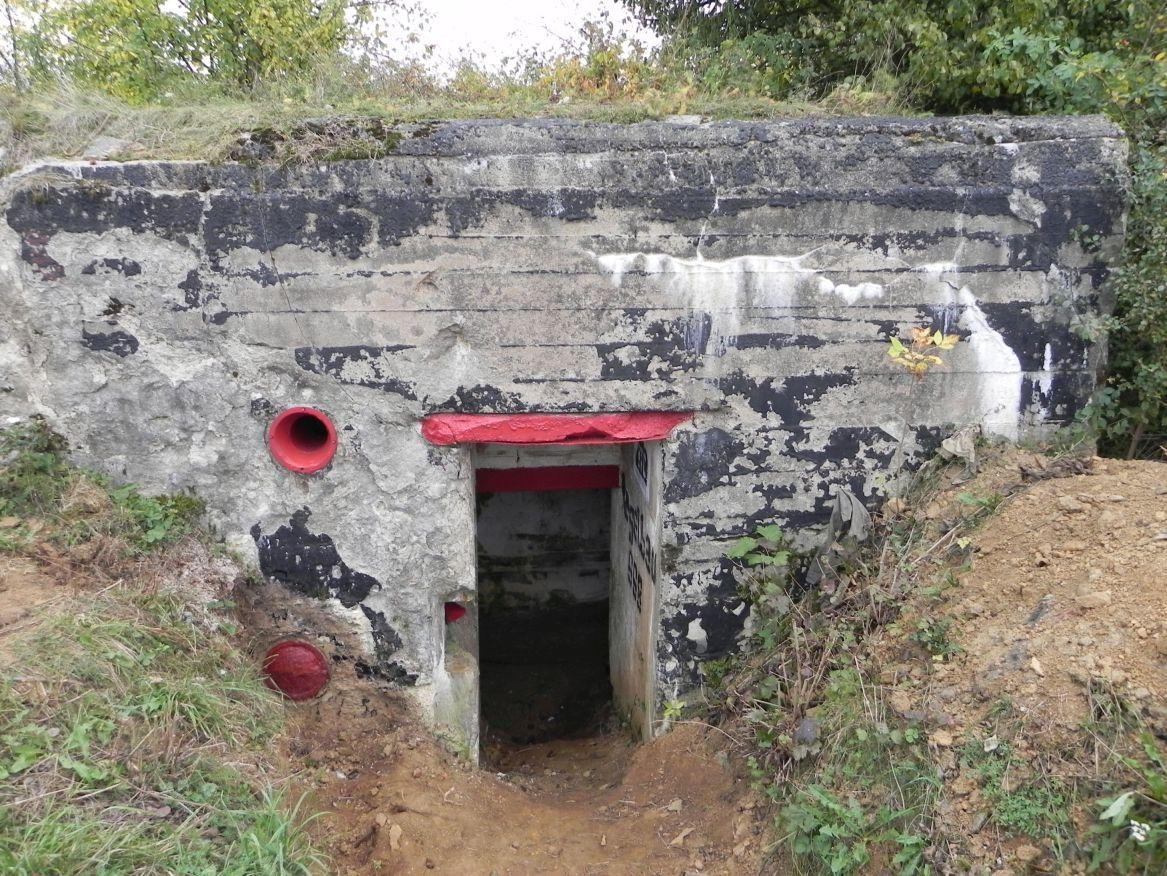Inowłódz Koś - bunkier Piechoty-5 (43)