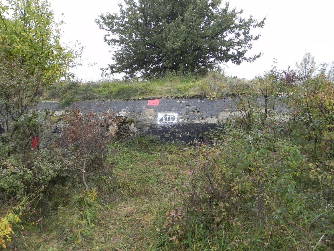 Inowłódz Koś - bunkier Piechoty-5 (46)