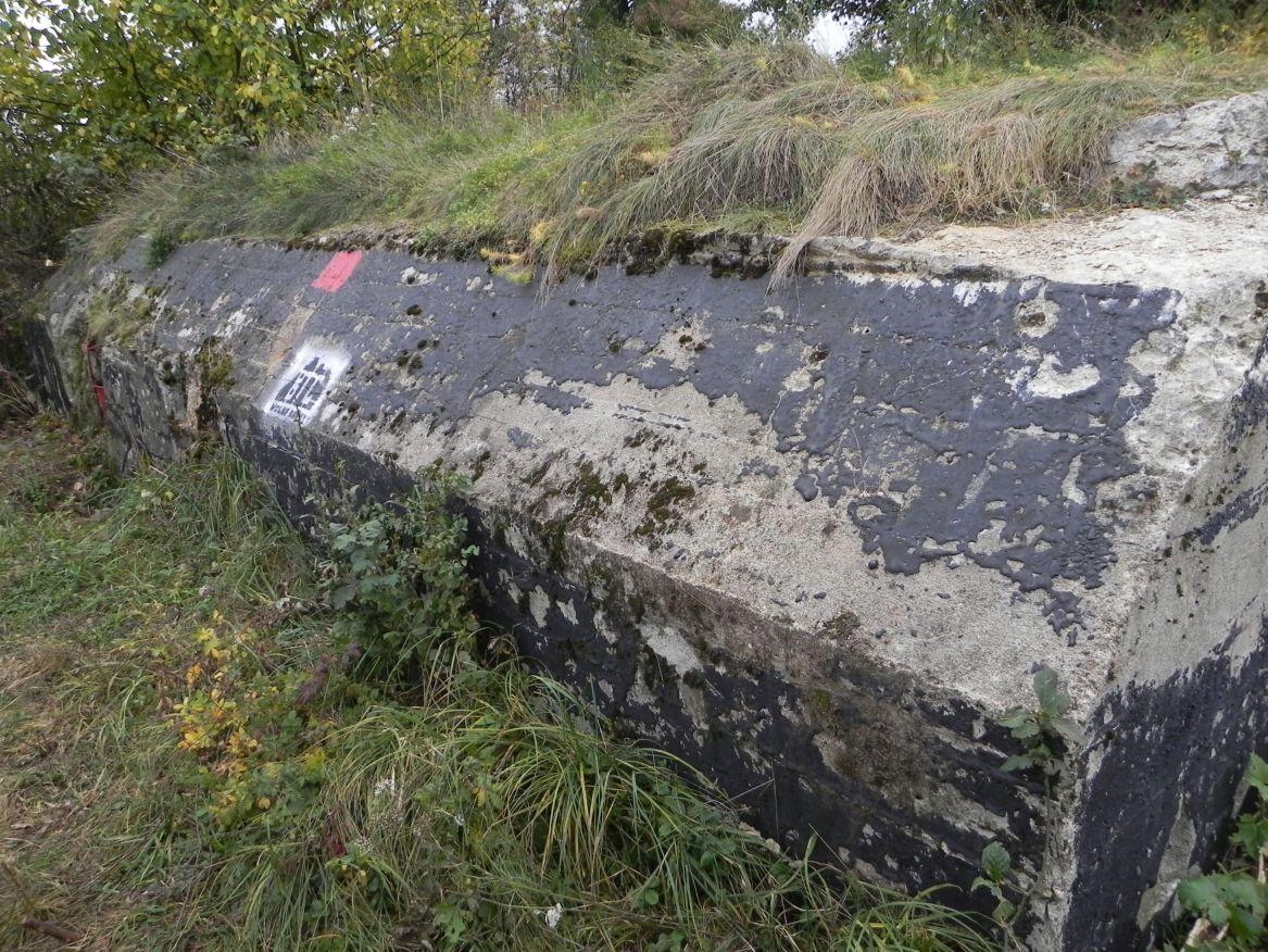 Inowłódz Koś - bunkier Piechoty-5 (49)
