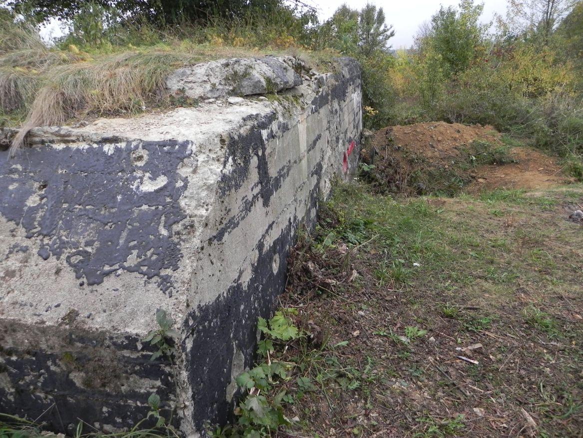 Inowłódz Koś - bunkier Piechoty-5 (50)
