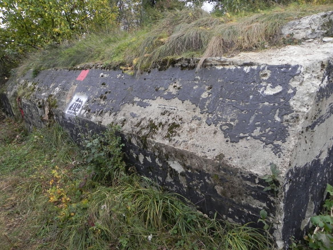 Inowłódz Koś - bunkier Piechoty-5 (51)