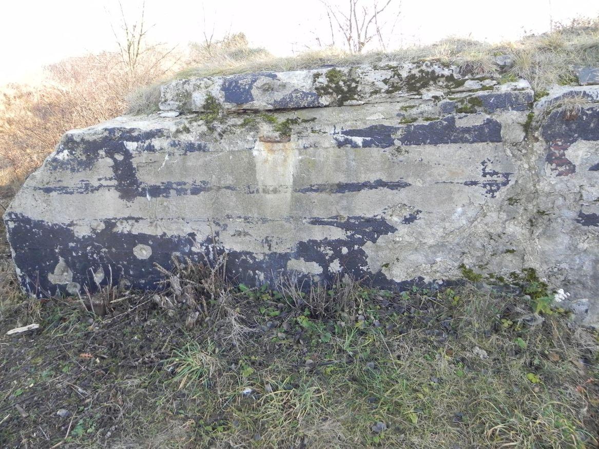 Inowłódz Koś - bunkier Piechoty-5 (56)