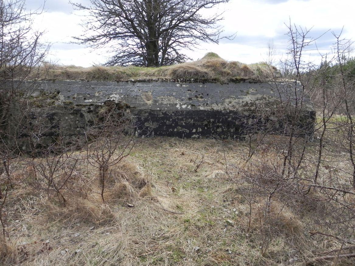 Inowłódz Koś - bunkier Piechoty-5 (6)