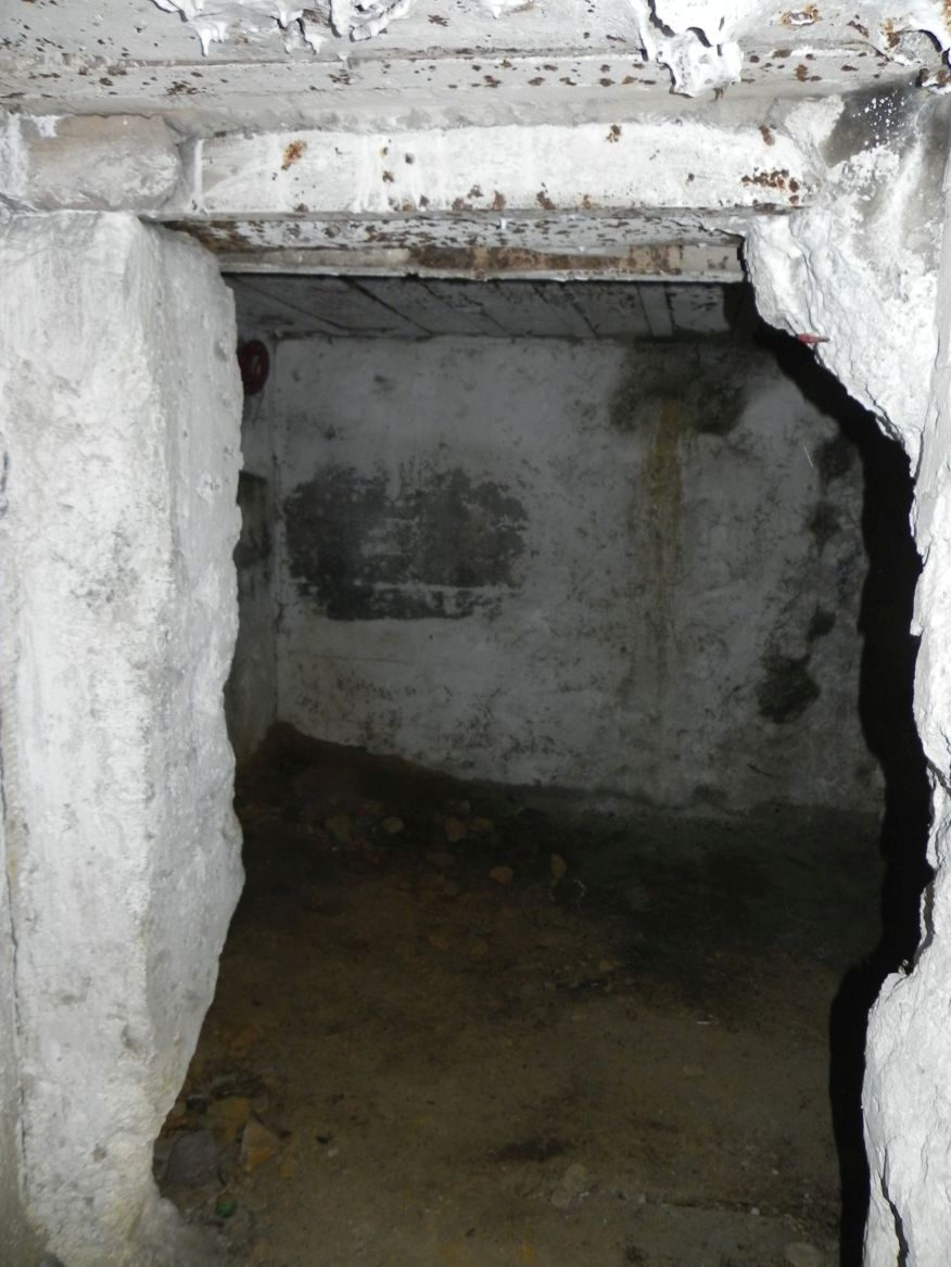 Inowłódz Koś - bunkier Piechoty-5 (61)