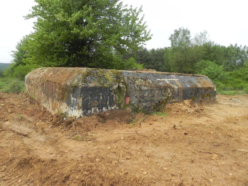 Inowłódz Koś - bunkier Piechoty-5 (68)
