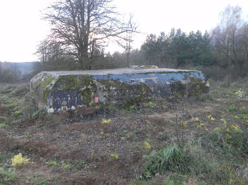 Inowłódz Koś - bunkier Piechoty-5 (75)