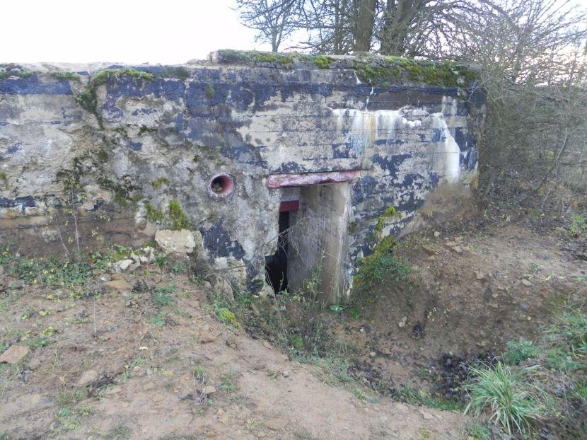 Inowłódz Koś - bunkier Piechoty-5 (78)