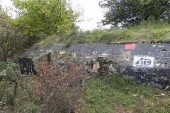 Inowłódz Koś - bunkier Piechoty-5 (53)