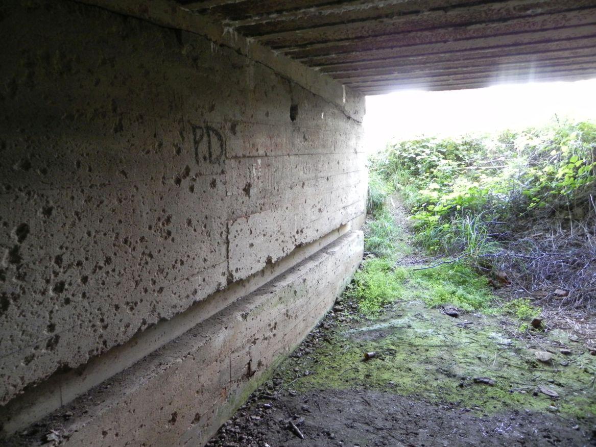 Inowłódz Koś - bunkier Garaż-6 (37)