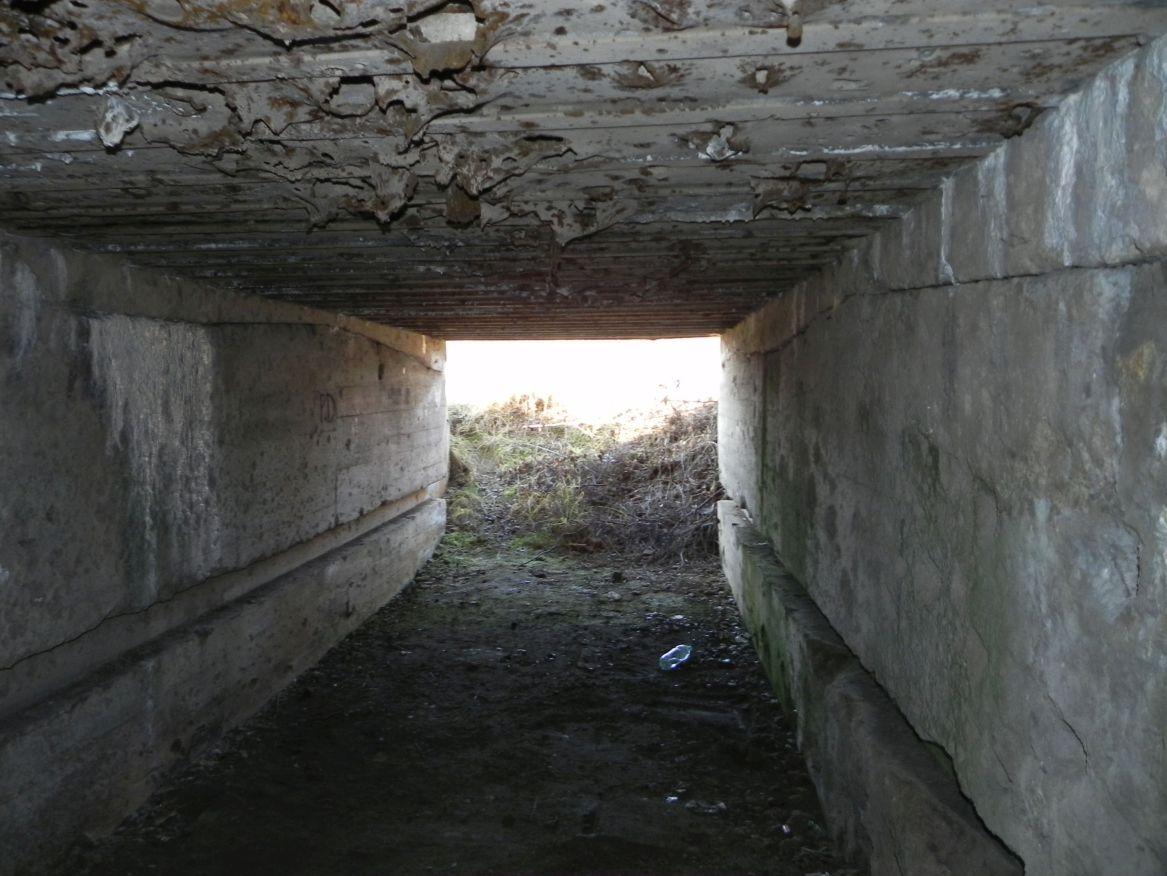 Inowłódz Koś - bunkier Garaż-6 (61)