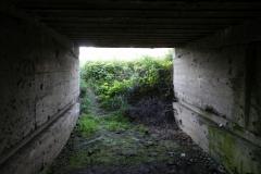 Inowłódz Koś - bunkier Garaż-6 (44)