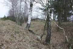 Bartoszówka - rów przeciwczołgowy (25)